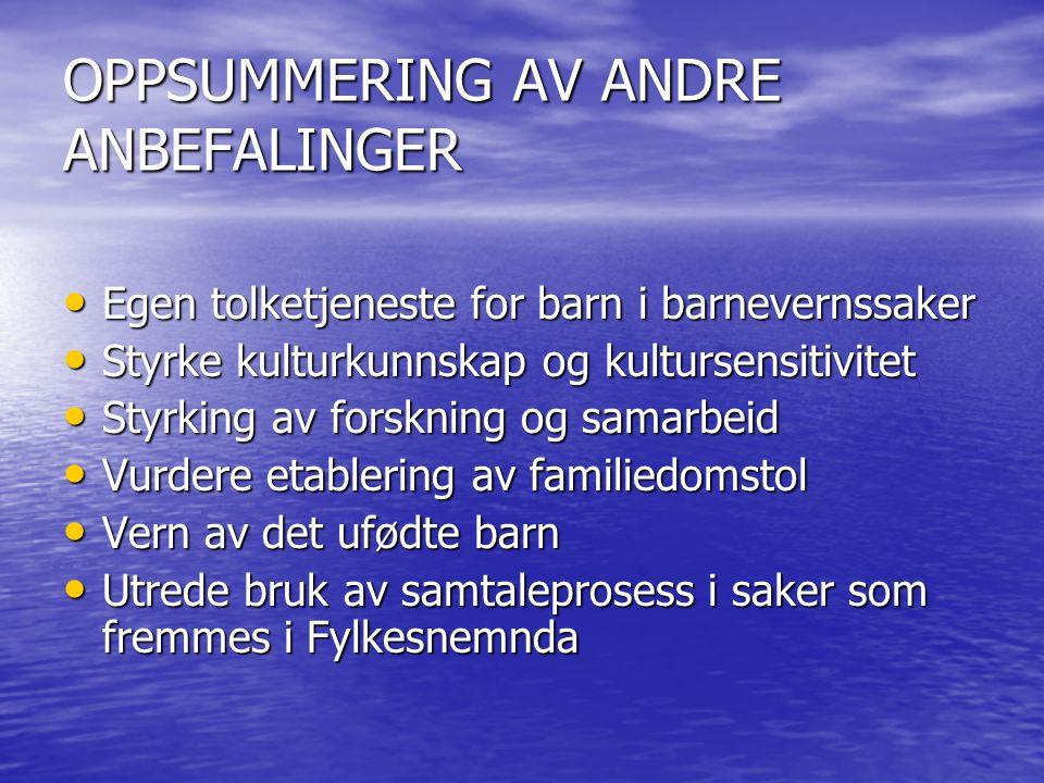OPPSUMMERING AV ANDRE ANBEFALINGER