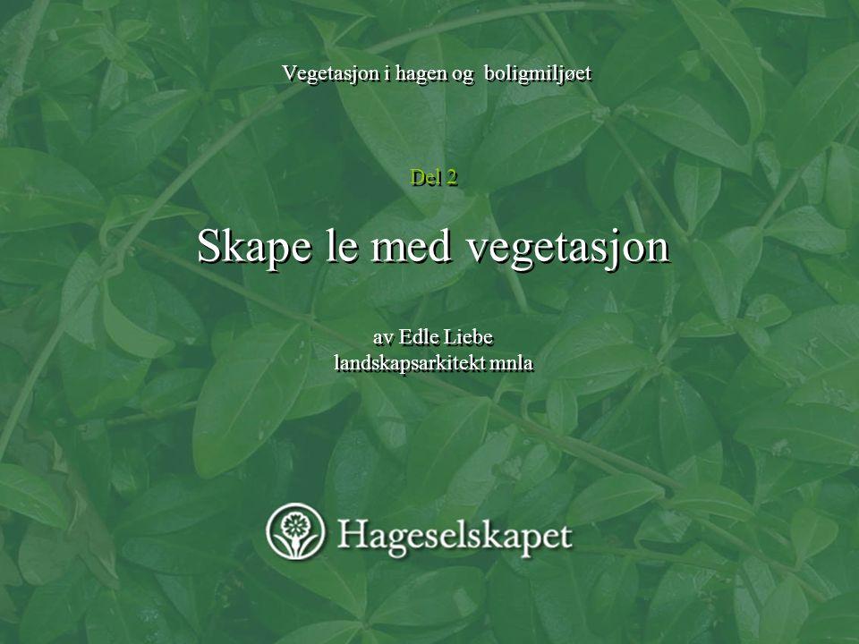 Vegetasjon i hagen og boligmiljøet