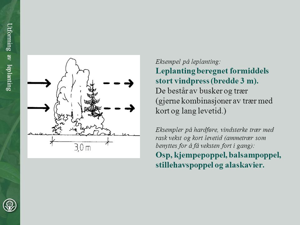 Leplanting beregnet formiddels stort vindpress (bredde 3 m).