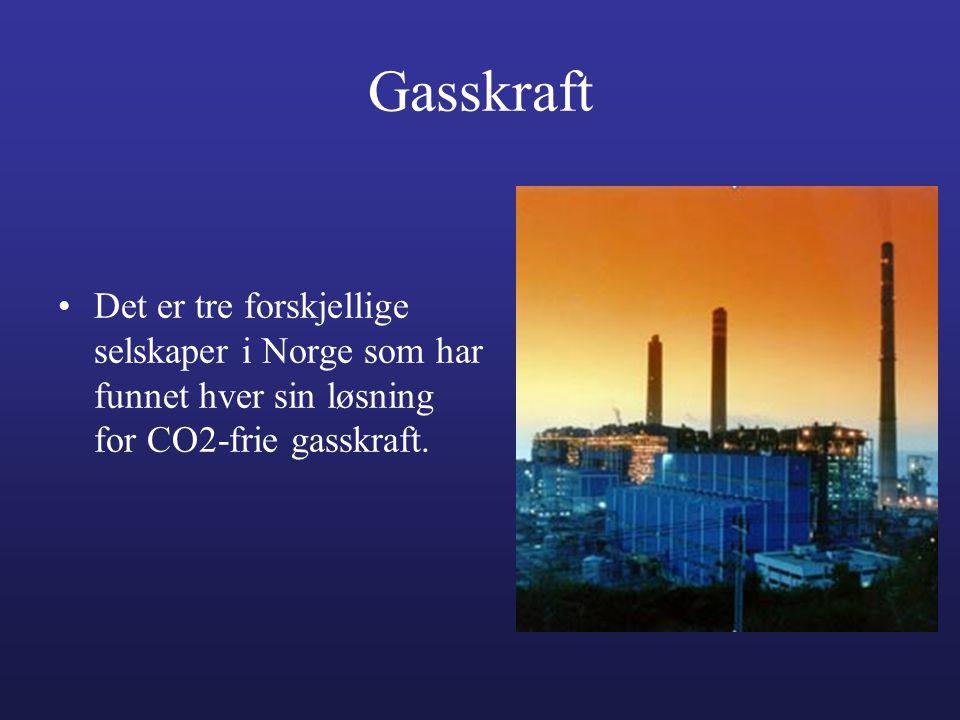 Gasskraft Det er tre forskjellige selskaper i Norge som har funnet hver sin løsning for CO2-frie gasskraft.