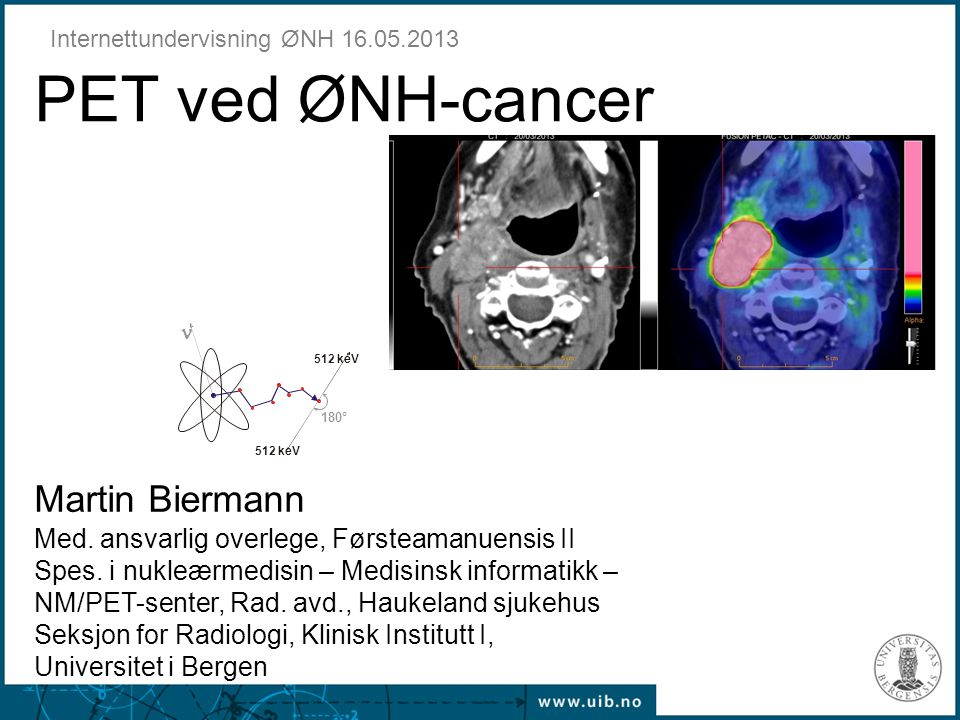 Internettundervisning ØNH 16.05.2013