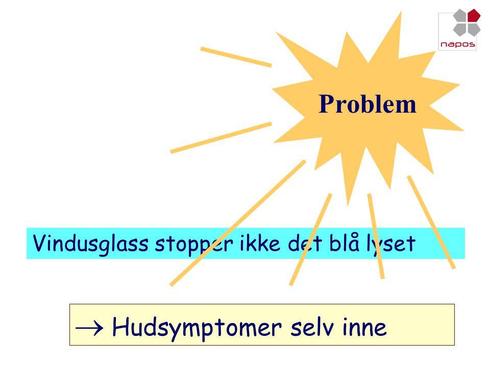  Hudsymptomer selv inne