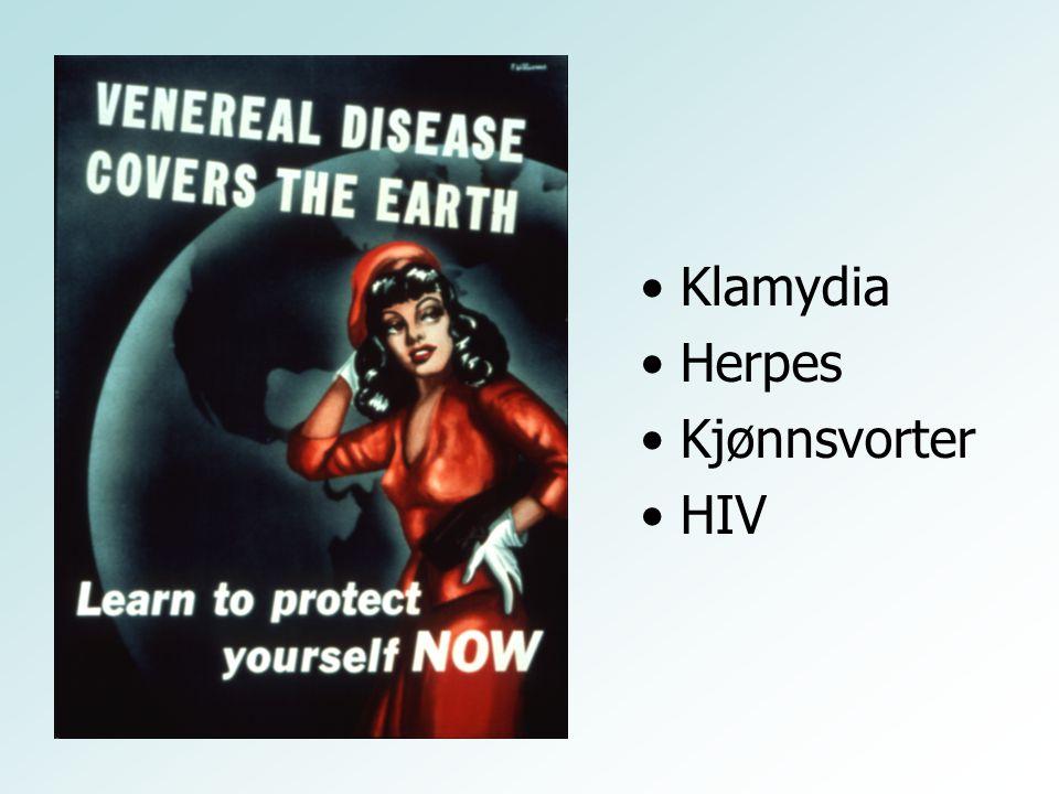 Klamydia Herpes Kjønnsvorter HIV