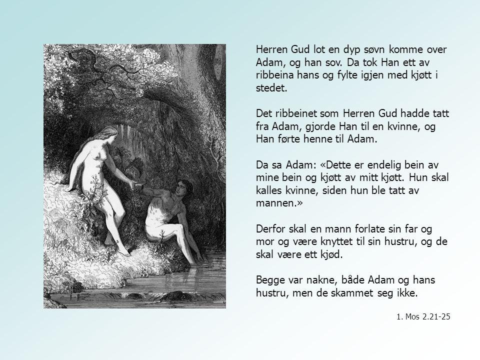Begge var nakne, både Adam og hans hustru, men de skammet seg ikke.
