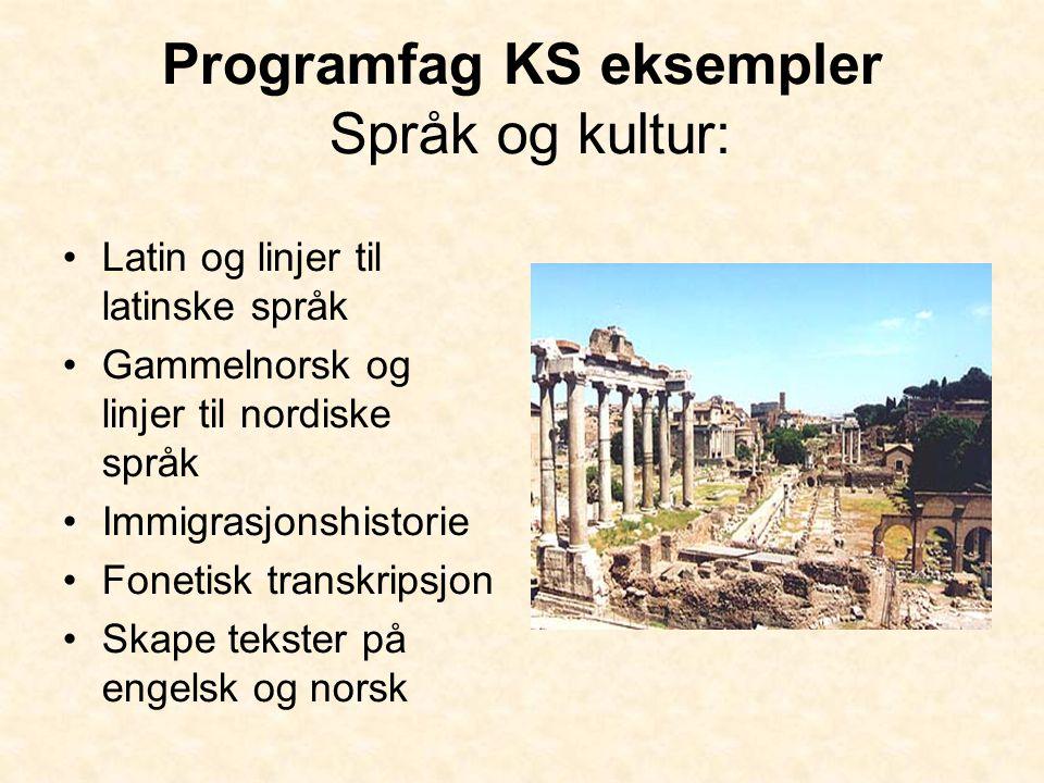 Programfag KS eksempler Språk og kultur: