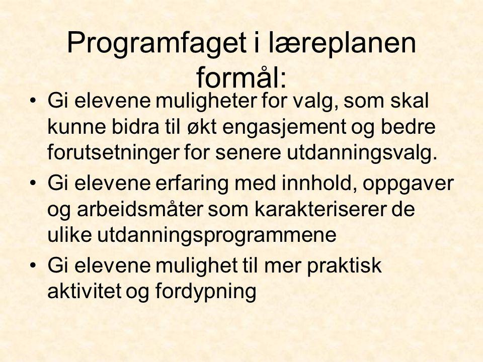 Programfaget i læreplanen formål: