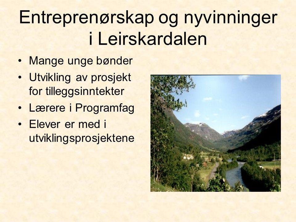 Entreprenørskap og nyvinninger i Leirskardalen