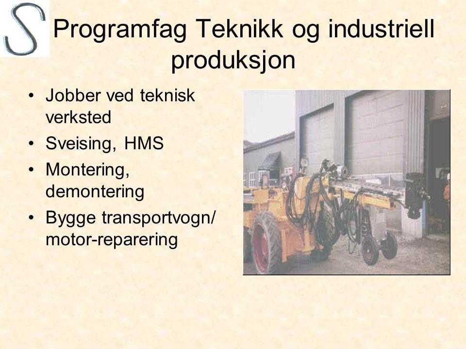 Programfag Teknikk og industriell produksjon