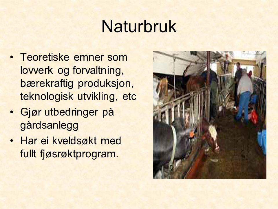 Naturbruk Teoretiske emner som lovverk og forvaltning, bærekraftig produksjon, teknologisk utvikling, etc.