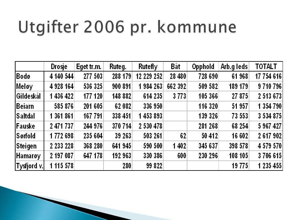 Utgifter 2006 pr. kommune