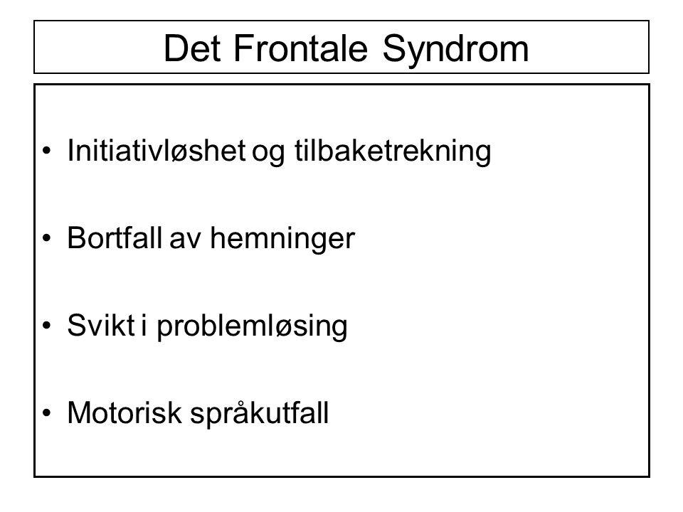 Det Frontale Syndrom Initiativløshet og tilbaketrekning