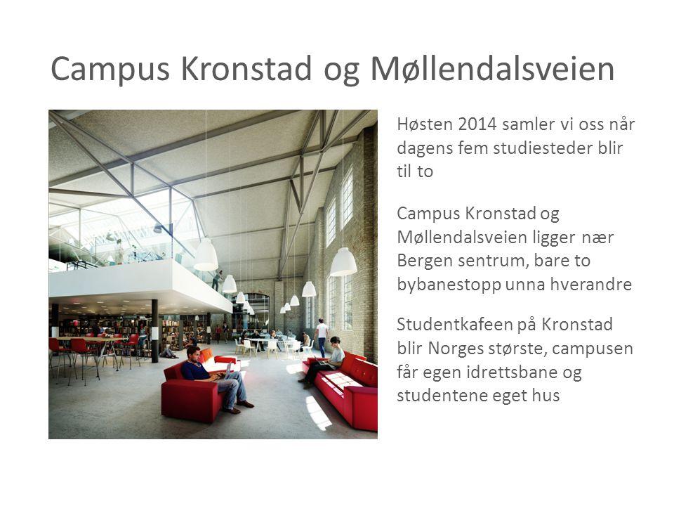 Campus Kronstad og Møllendalsveien