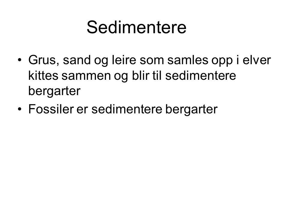 Sedimentere Grus, sand og leire som samles opp i elver kittes sammen og blir til sedimentere bergarter.