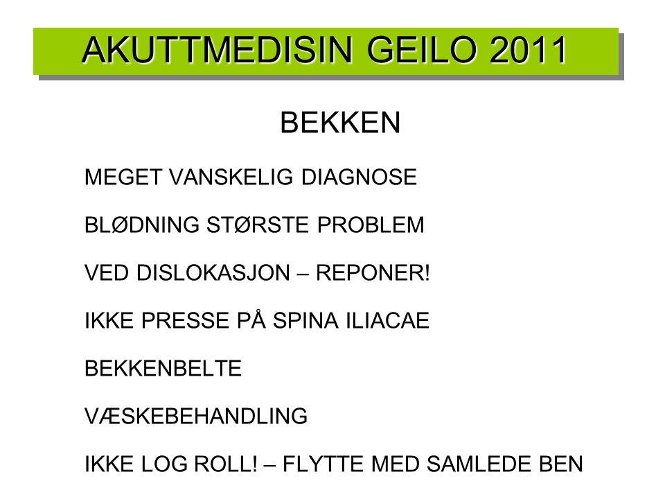 AKUTTMEDISIN GEILO 2011 BEKKEN MEGET VANSKELIG DIAGNOSE