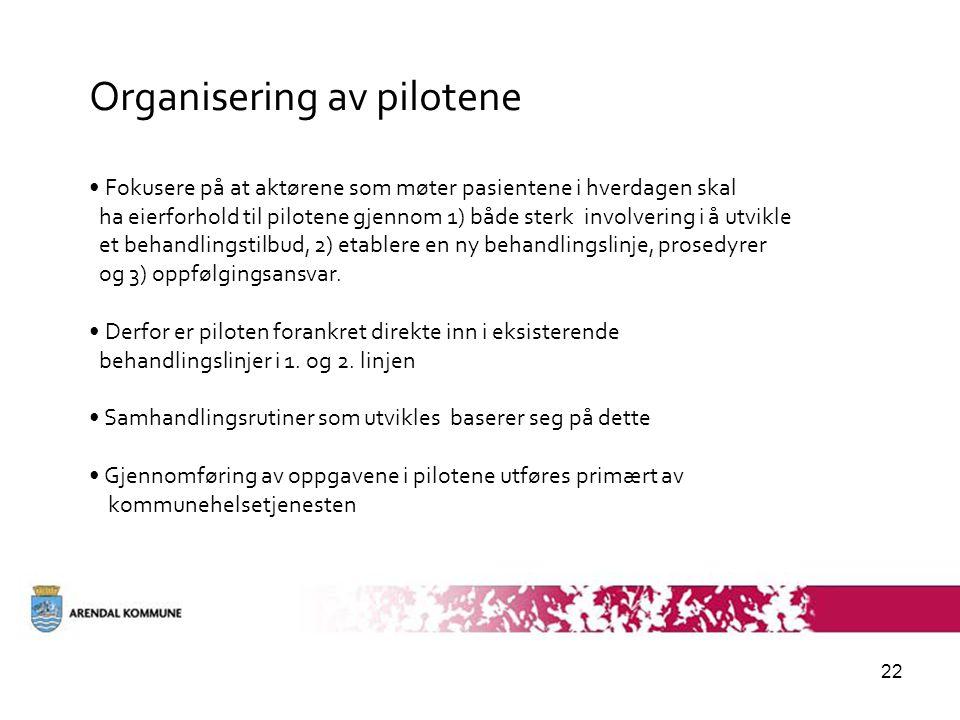 Organisering av pilotene