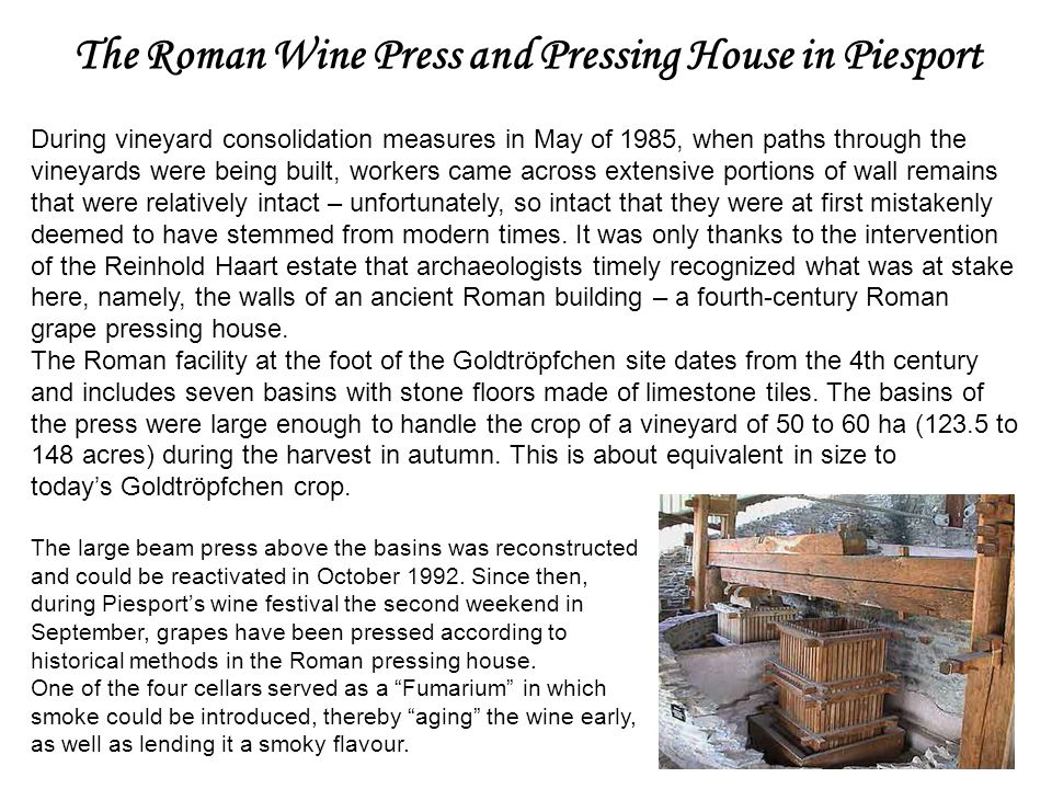 The Roman Wine Press and Pressing House in Piesport