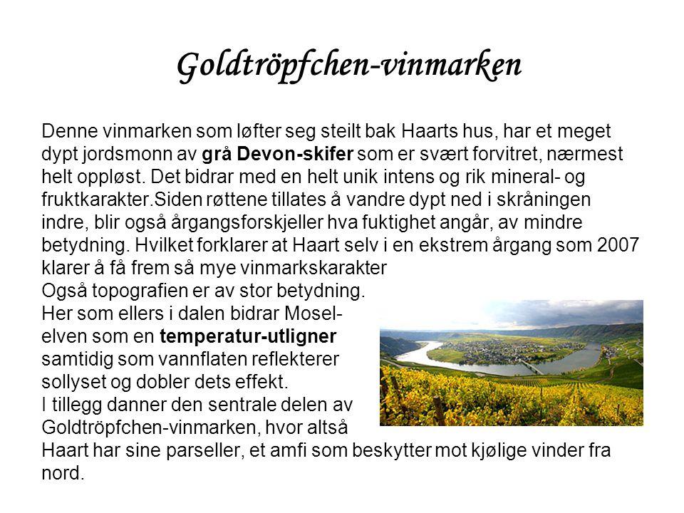 Goldtröpfchen-vinmarken