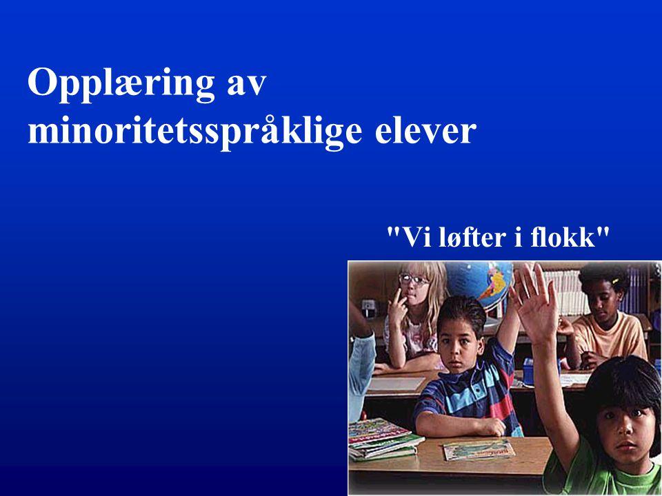 Opplæring av minoritetsspråklige elever