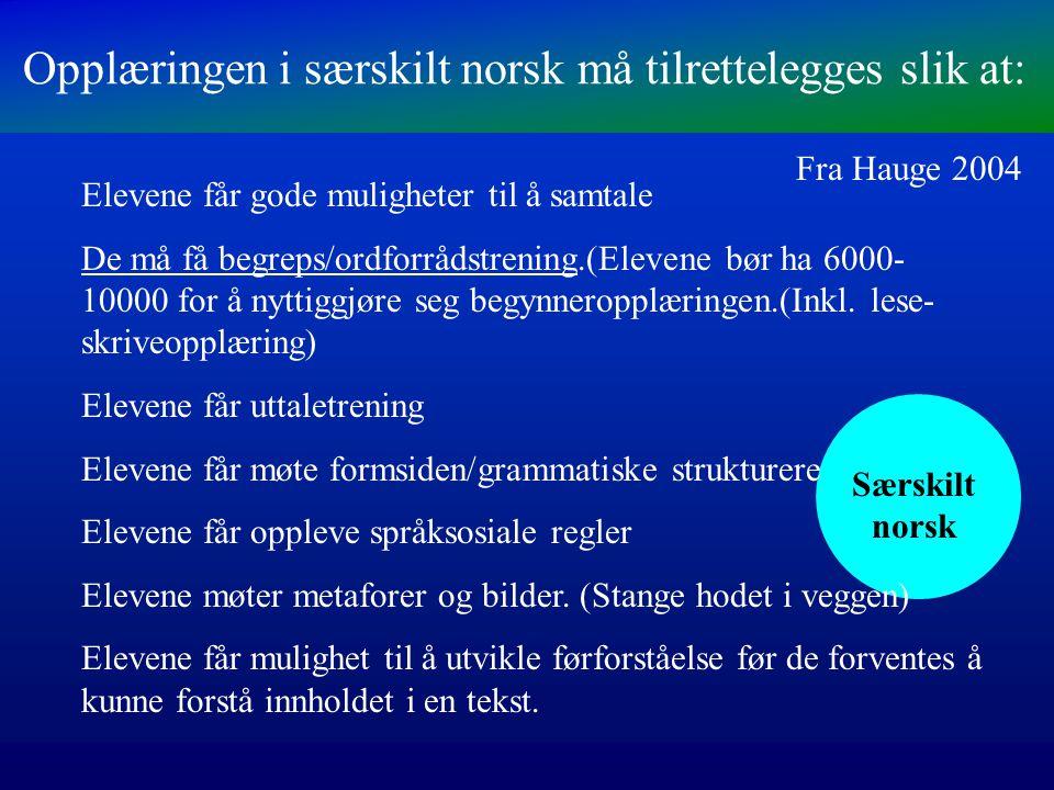 Opplæringen i særskilt norsk må tilrettelegges slik at: