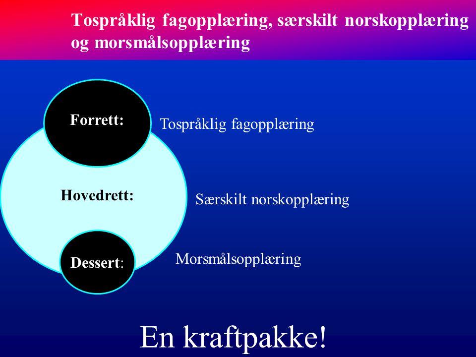 Tospråklig fagopplæring, særskilt norskopplæring og morsmålsopplæring
