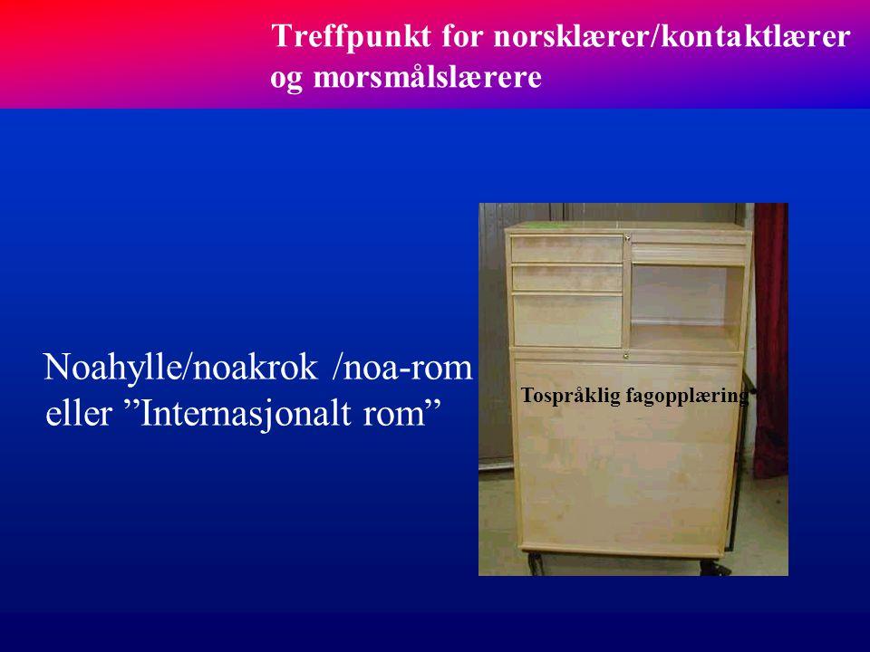 Treffpunkt for norsklærer/kontaktlærer og morsmålslærere