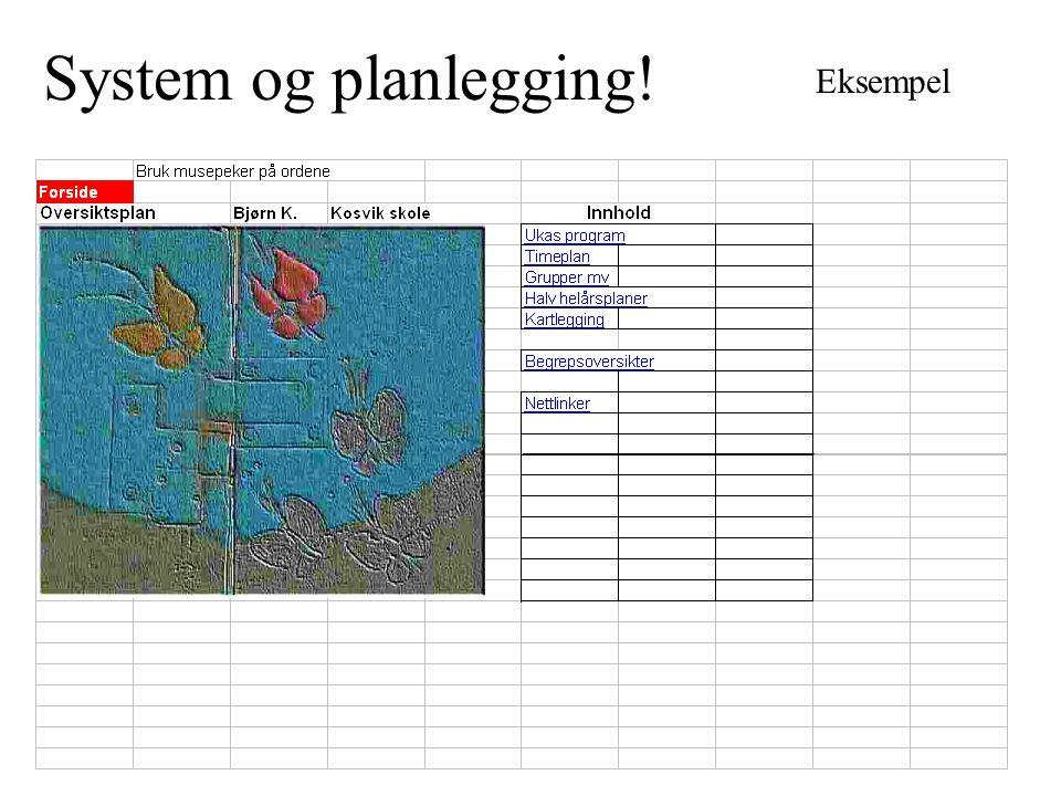 System og planlegging! Eksempel