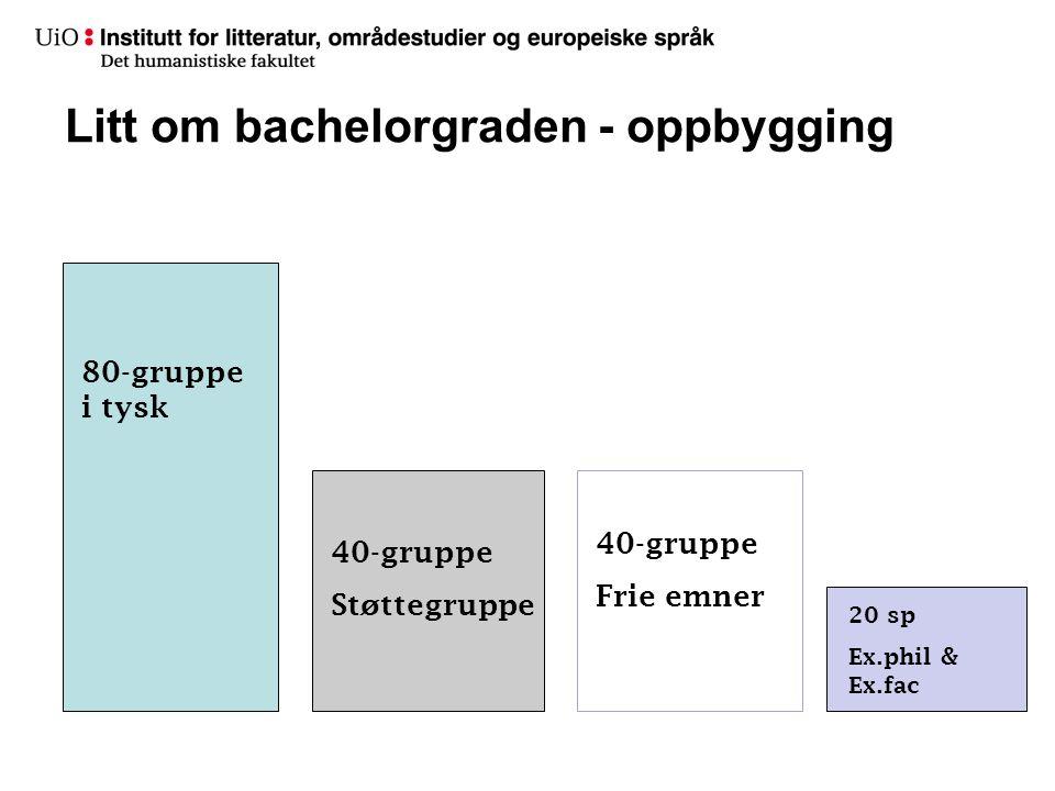 Litt om bachelorgraden - oppbygging