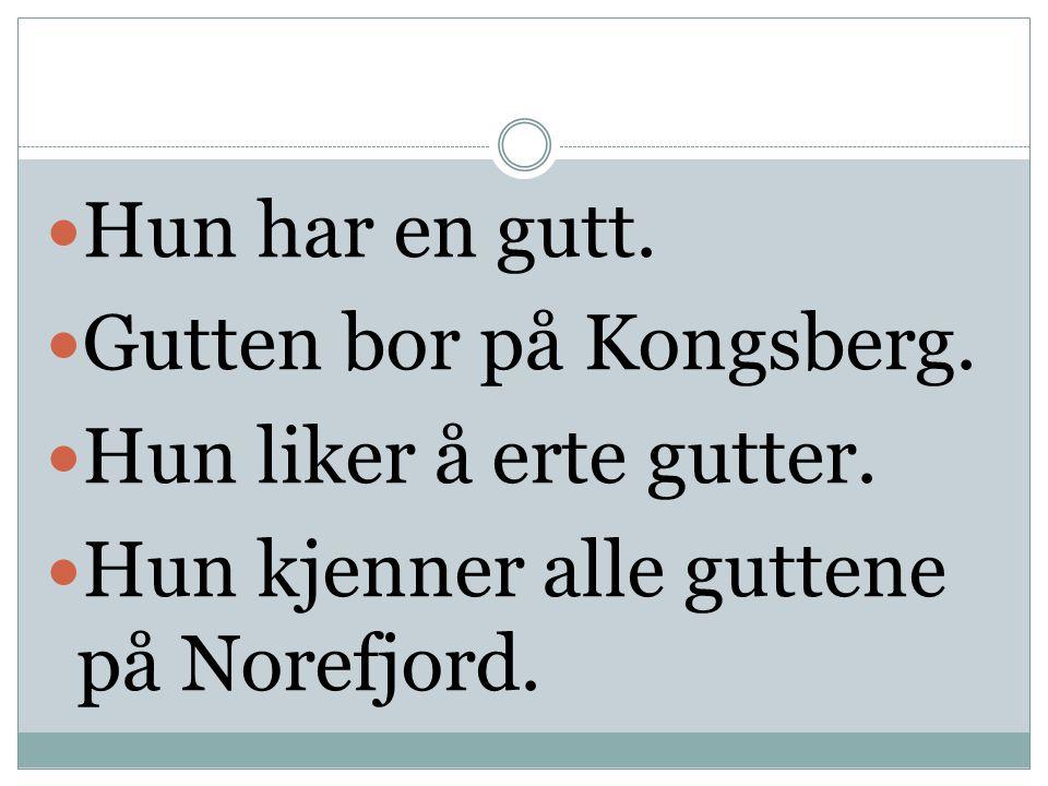 Hun har en gutt. Gutten bor på Kongsberg. Hun liker å erte gutter.