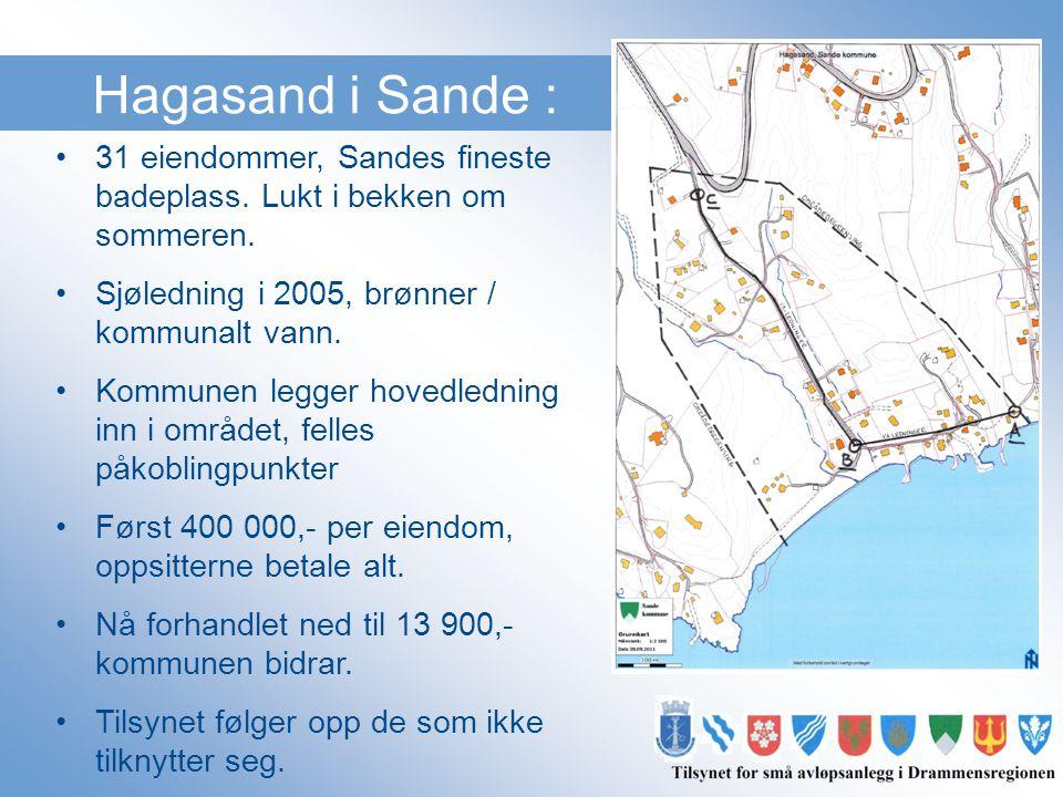 Hagasand i Sande : 31 eiendommer, Sandes fineste badeplass. Lukt i bekken om sommeren. Sjøledning i 2005, brønner / kommunalt vann.