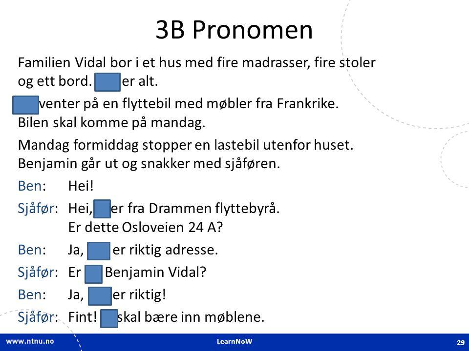 3B Pronomen
