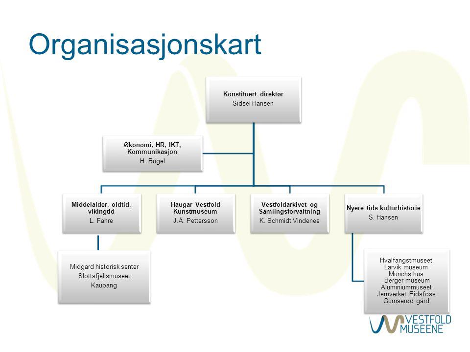 Organisasjonskart Konstituert direktør Sidsel Hansen