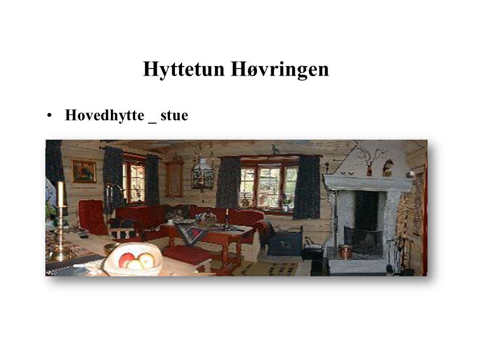 Hyttetun Høvringen Hovedhytte _ stue