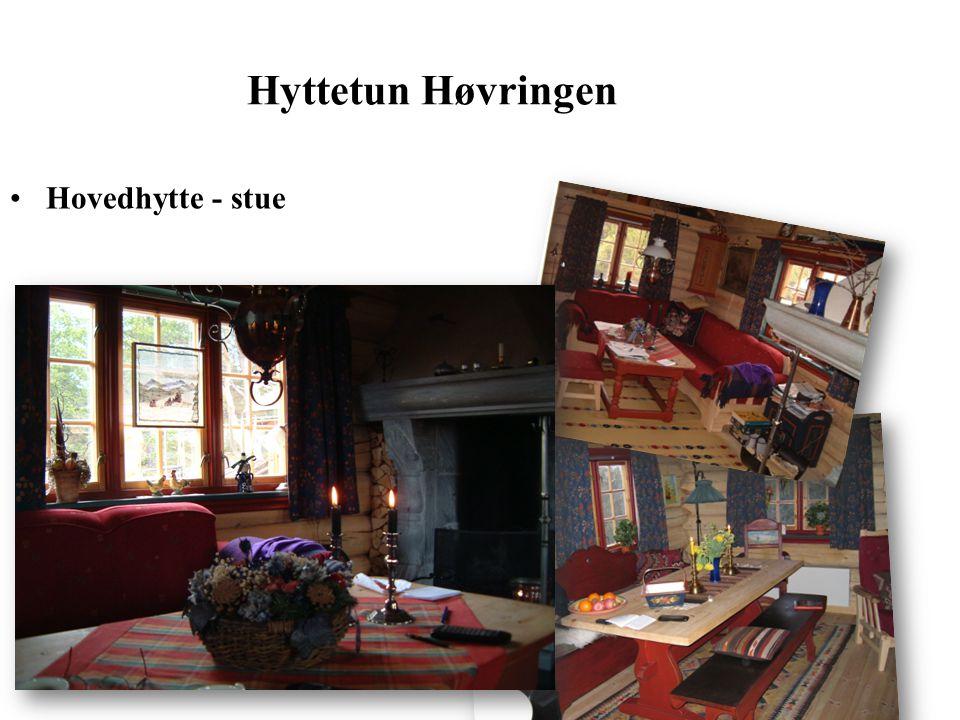 Hyttetun Høvringen Hovedhytte - stue