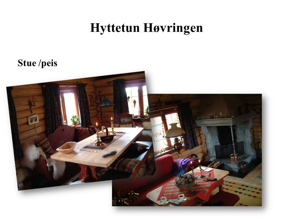 Hyttetun Høvringen Stue /peis