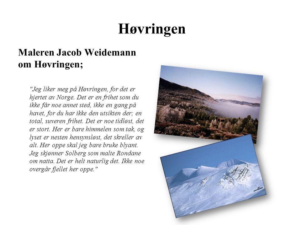 Høvringen Maleren Jacob Weidemann om Høvringen;