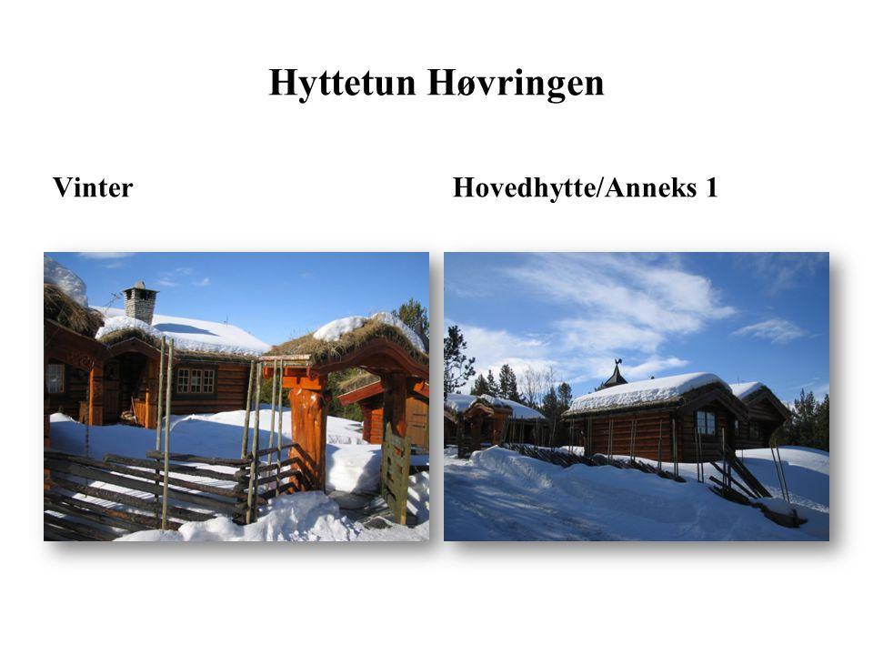 Hyttetun Høvringen Vinter Hovedhytte/Anneks 1