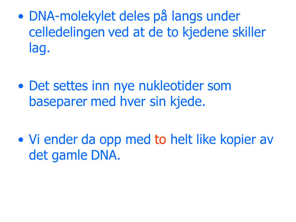 DNA-molekylet deles på langs under celledelingen ved at de to kjedene skiller lag.