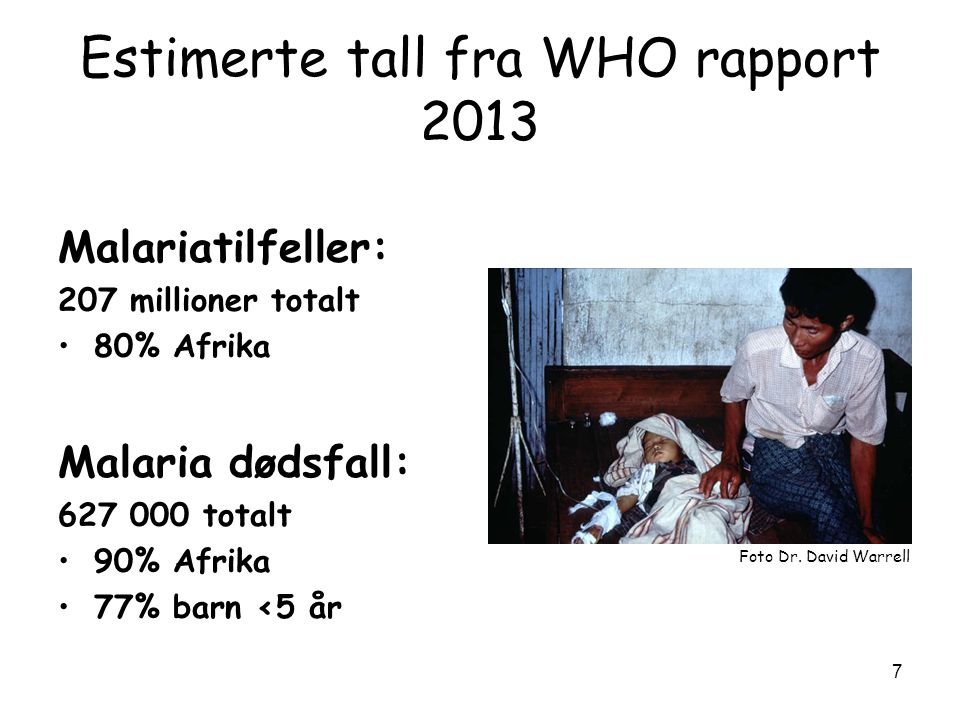 Estimerte tall fra WHO rapport 2013