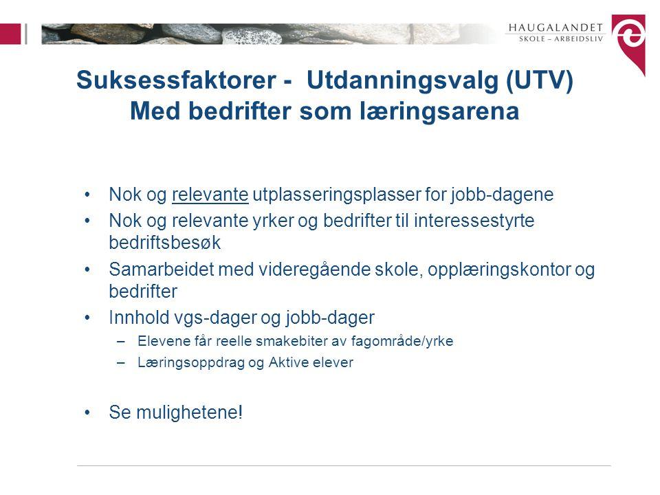Suksessfaktorer - Utdanningsvalg (UTV) Med bedrifter som læringsarena