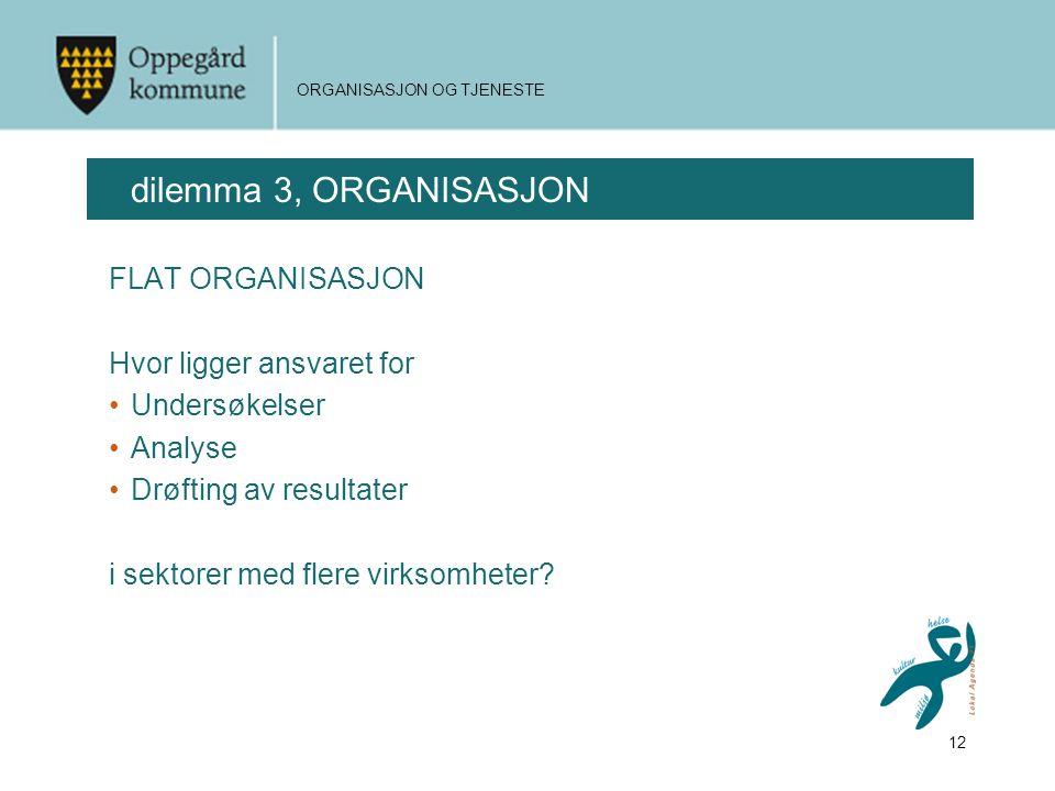 dilemma 3, ORGANISASJON FLAT ORGANISASJON Hvor ligger ansvaret for