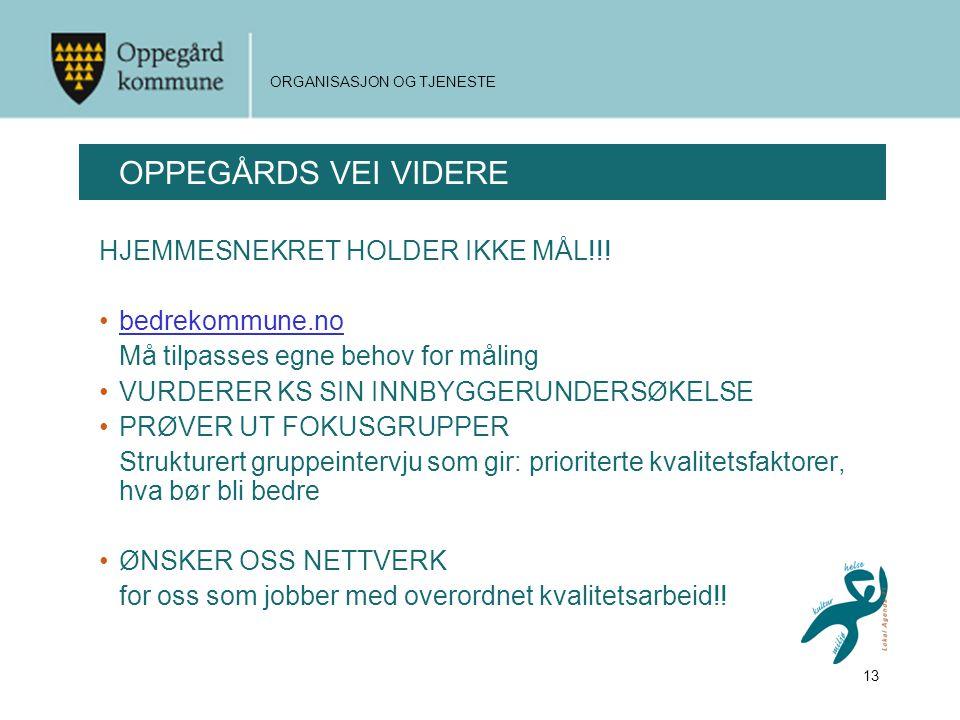 OPPEGÅRDS VEI VIDERE HJEMMESNEKRET HOLDER IKKE MÅL!!! bedrekommune.no