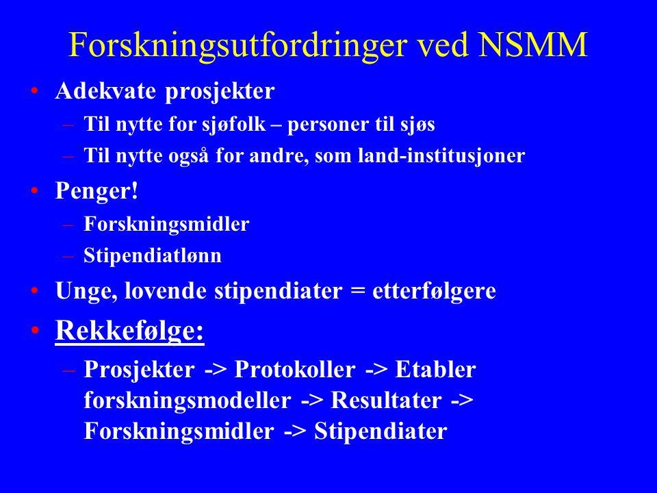 Forskningsutfordringer ved NSMM