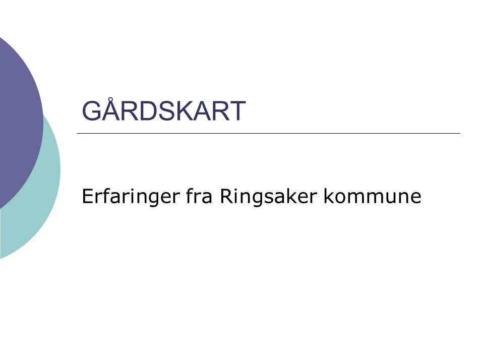 Erfaringer fra Ringsaker kommune