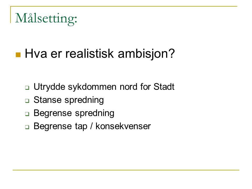 Målsetting: Hva er realistisk ambisjon