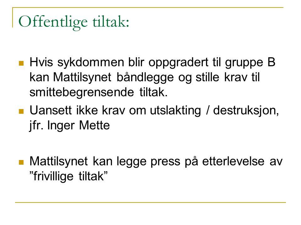 Offentlige tiltak: Hvis sykdommen blir oppgradert til gruppe B kan Mattilsynet båndlegge og stille krav til smittebegrensende tiltak.