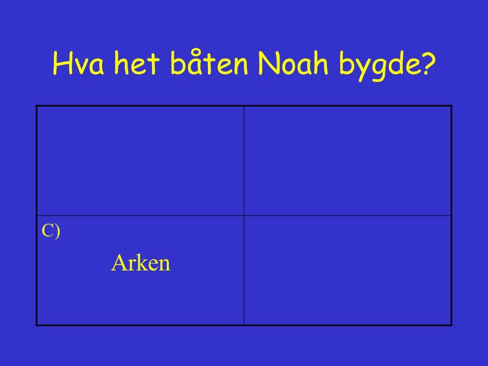 Hva het båten Noah bygde