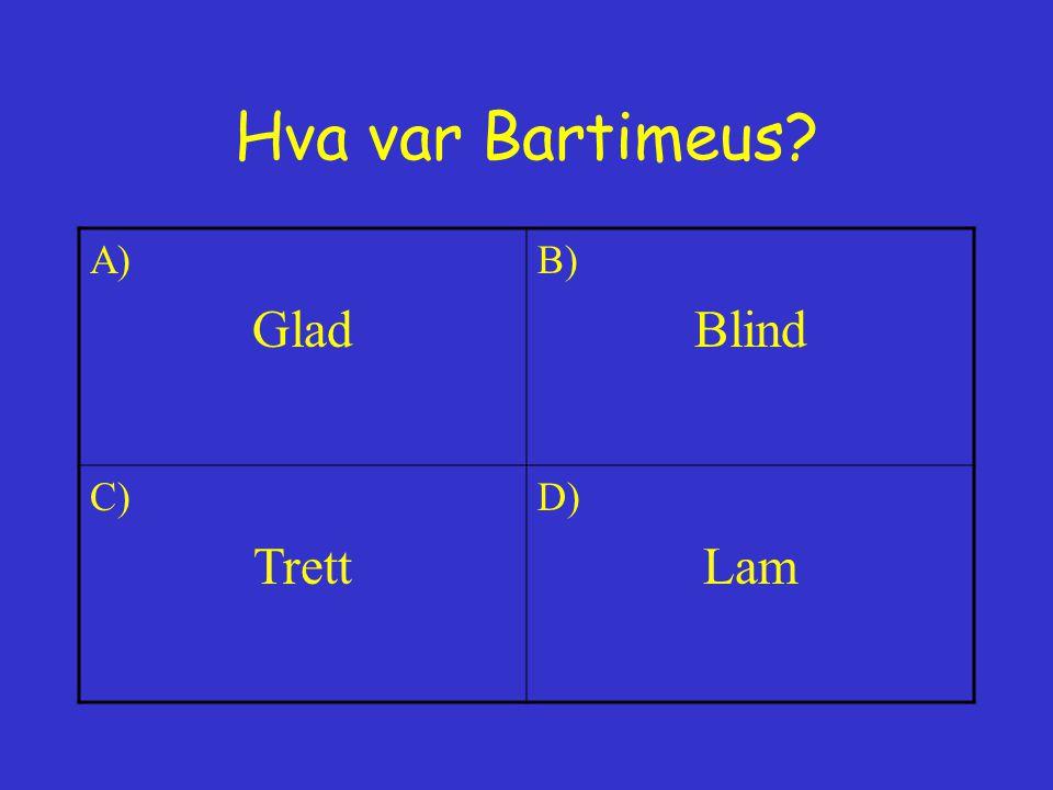 Hva var Bartimeus A) Glad B) Blind C) Trett D) Lam
