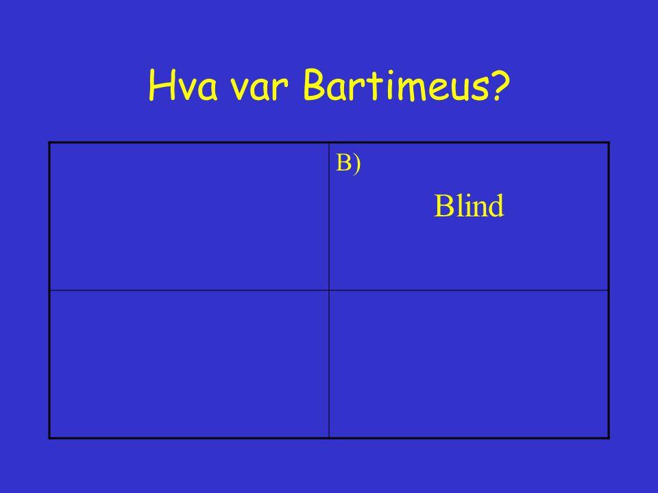 Hva var Bartimeus B) Blind