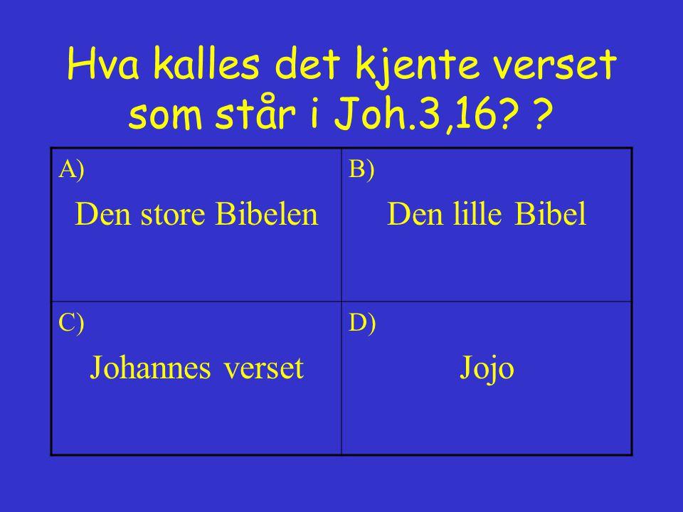 Hva kalles det kjente verset som står i Joh.3,16