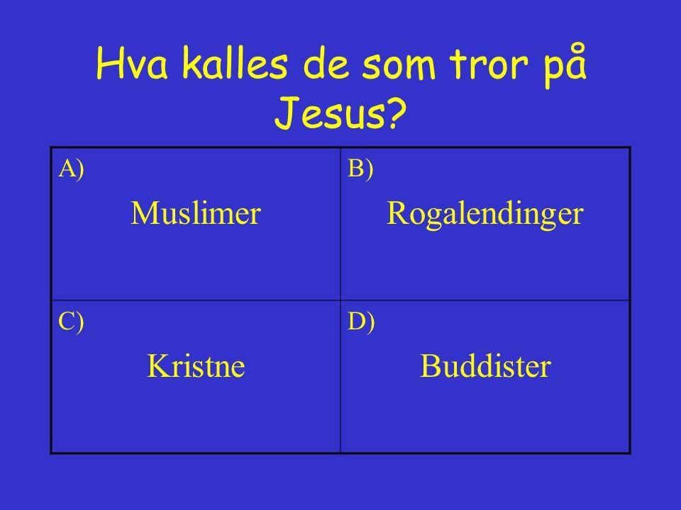 Hva kalles de som tror på Jesus